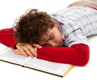 Предизпитни антистрес храни за ученици